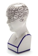 phrenology head HR