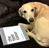 Pip the dog